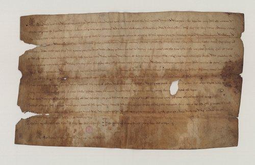 Pergamena del 1221